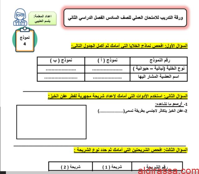 ورقة امتحان العملي 4 علوم للصف السادس الفصل الثاني إعداد بلسم العتيي
